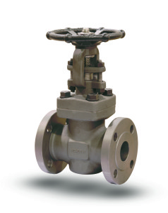 NEWCO Forged Steel Gate Valve