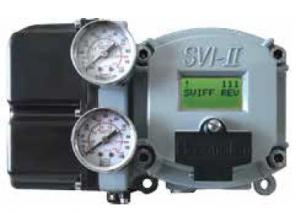 Photo of SVI FF