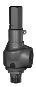 Consolidated 1982 Series Safety Relief Valve